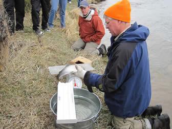 May 11 2011 Beartooth Flyfishing