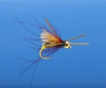 Caddis and Mayfly Nymphs