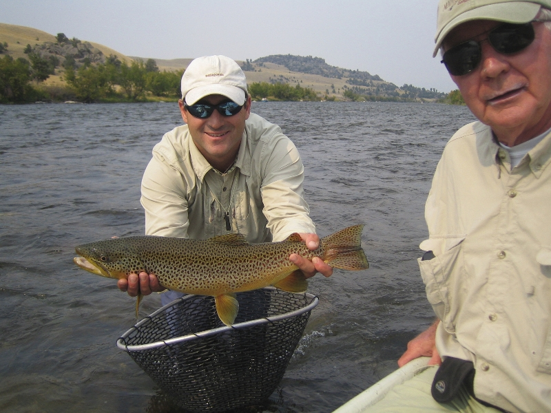 joey-and-big-brown-full