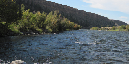 Montana Fly Fishing - Beartooth Flyfishing Homepage