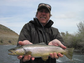 May 12 2015 beartooth flyfishing for Upper madison fishing report