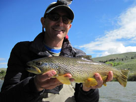 Madison river fishing report beartooth flyfishing for Ruby river fishing report