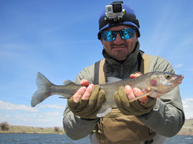 Fishing Reports & Tips - Page 3 of 89 - Beartooth Flyfishing